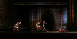 Demoniaca Everlasting Night Carnage Screenshot